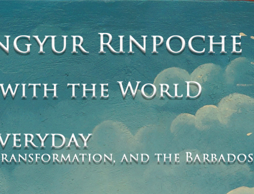 Mingyur Rinpoche: In Love With the World; Dying Everyday